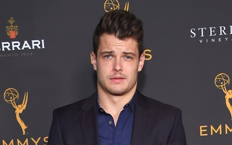 Michael Mealor, The Young and the Restless